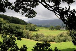 Korukoplan haastekoru 7 – Wales