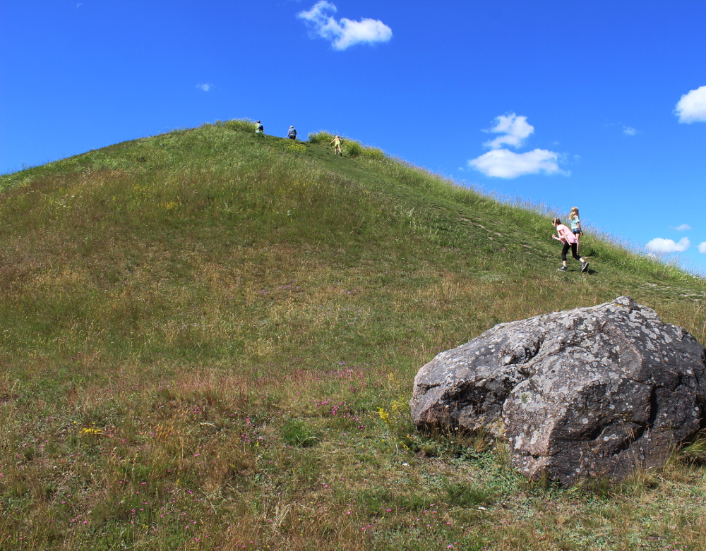 uppsala_mounds_kids