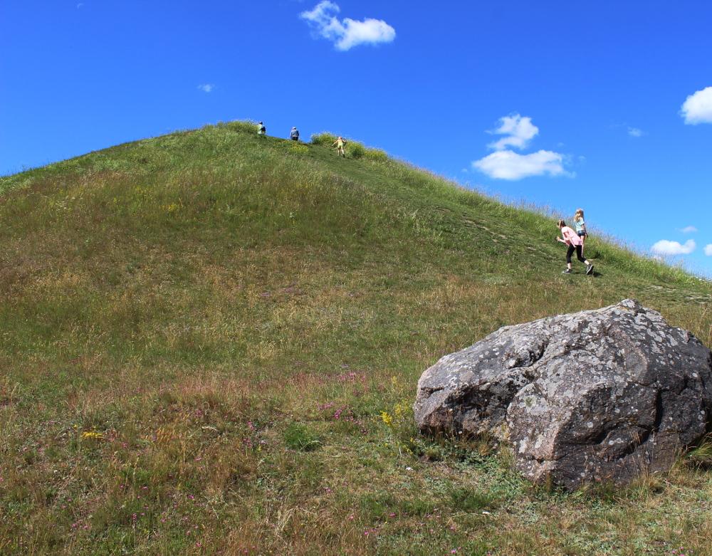 uppsala_mounds_kids