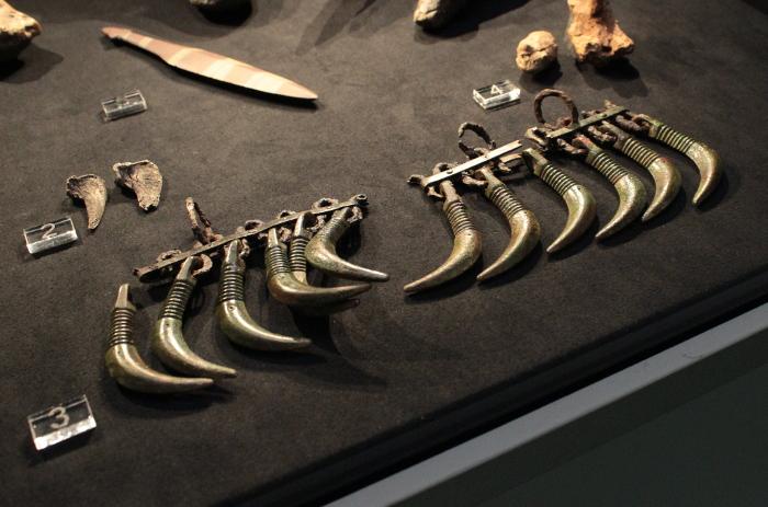 [;fi]Karhunhammasriipuksia[:en]Bear tooth pendants[:]